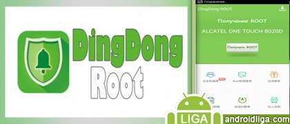DingDong Root