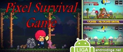 Pixel Survival